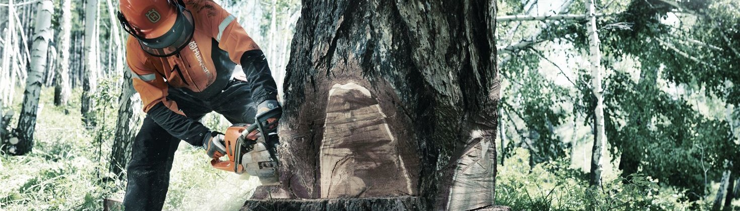 Il miglior equipaggiamento per il bosco
